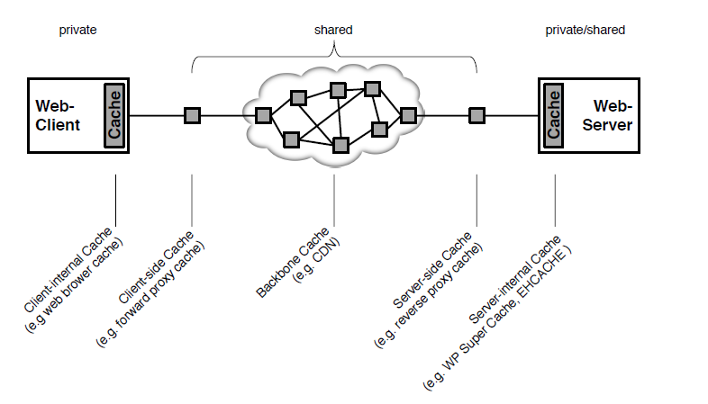 图1 按位置和资源访问策略分类的不同类型的Web缓存系统